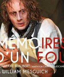 """""""Mémoires d'un fou"""", de Gustave Flaubert"""