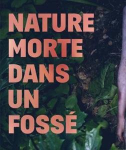 """""""Nature morte dans un fossé"""", de Fausto Paravidino"""
