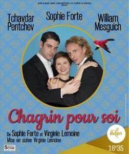"""""""Chagrin pour soi"""", de Sophie Forte et Virginie Lemoine"""