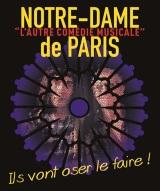 """""""Notre-Dame de Paris, l'autre comédie musicale"""", de Jean-Luc Bosc, Marie-Émilie Nayrand"""