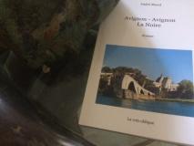 """""""Avignon-Avignon La Noire"""", d'André Morel"""